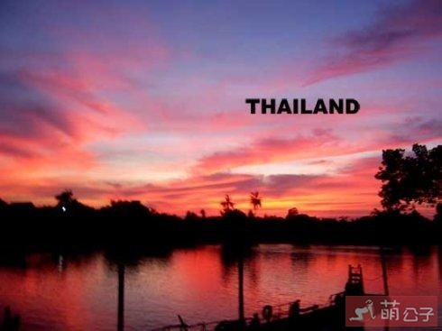 2019泰国果冻—助攻神器